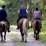 View main map for horse riders