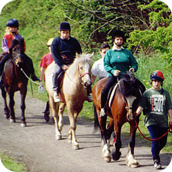 Tips for horse riders